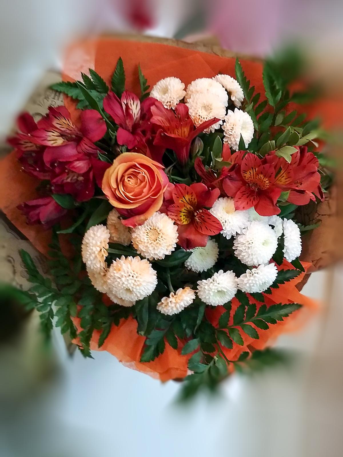 цветы Могилев