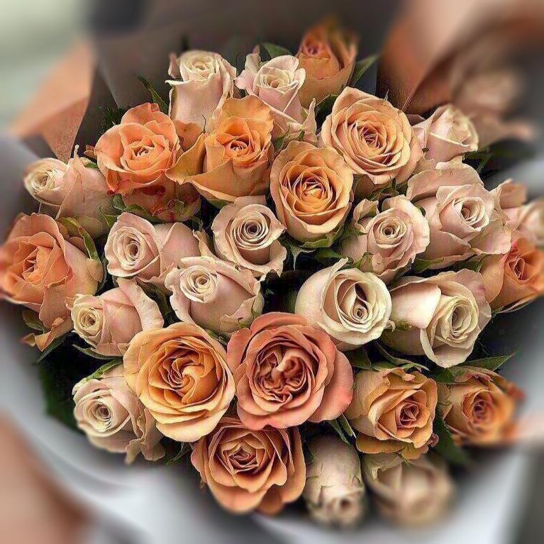 букеты,доставка,бесплатно,Могилев,доставка,БУКЕТиК,цветы,розы,хризантемы,гвоздики,тюльпаны,букеты,герберы,гортензия,розы,ирисы,лилии