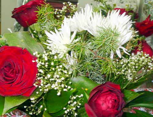 flowers,Mogilev,promotions,цветы,скидки,Могилев,доставка